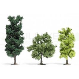 3 Arbres à feuilles miniatures