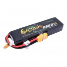 Batterie LI-PO 60C 6500MAH 11.1V XT90 BASHING