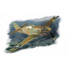 """Maquette de P-40B/C """"HAWK"""" 81A (1/72)"""