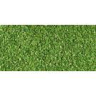 Sciure vert clair 40gr