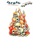 Autocollant interne flaming skulls